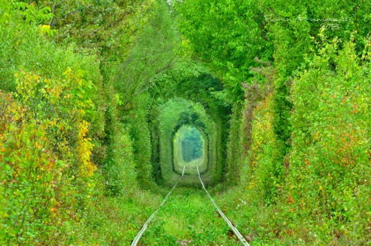 Tunelul_Iubirii3-750x498