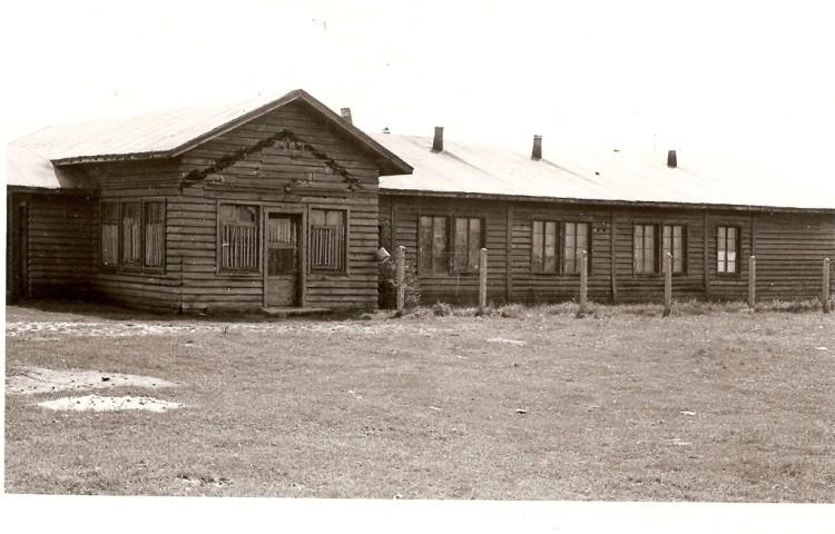1946mosnita