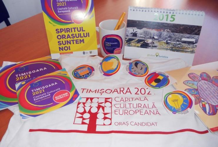 Asociatia Timisoara Capitala culturala