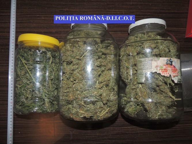 canabis-droguri-1